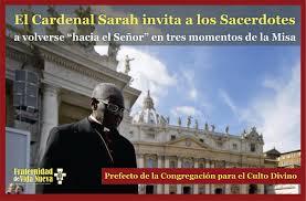 Resultado de imagen para Cardenal Sarah imágen