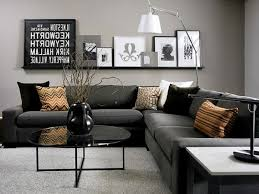 Image of: Decorate With Black Furniture  Image of: Contemporary Living Room  ...