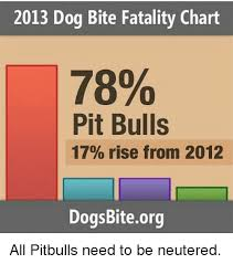 Pitbull Dog Years Chart 2013 Dog Bite Fatality Chart 78 Pit Bulls 17 Rise From