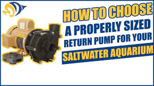 How To Choose A Properly Sized Return Pump For Your