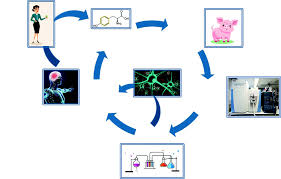 Research Tool Helps Validate Efficacy Of Functional Foods