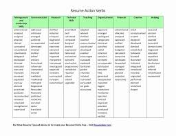 Action Verbs For Resumes Stunning Action Words For Resumes Active Verbs Resume Best Resume Collection