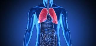 Tydencz Nehty I špatné Dýchání Mohou Upozornit Na Smrtelnou Nemoc