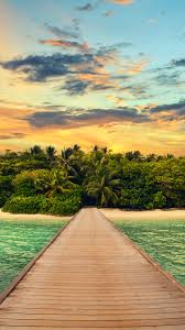 exotic island forest summer vacation android wallpaper