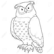 coloring book owl stock vector 38419994