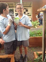 Stephanie Alexander Kitchen Garden National Program St Peters Epping Sustainability Blog