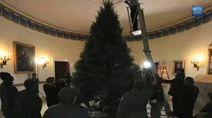 101208_How_many_people_put_up_Christmas_tree_for_Obamas_political