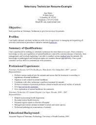 Optician Sample Resume 100 Resume Lesson Plan Business Letter