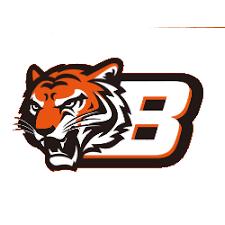 Tag: cincinnati bengals concept logos | Sports Logo History