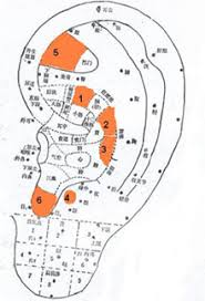 Acupuncture Points For Fertility Chart Acupuncture And Moxibustion For Female Infertility
