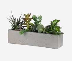 Concrete Planter For Windowsill