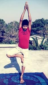 व क ष सन य ग vrikasana yoga श र व त क ल ए 12 आस न य ग सन types of yoga asanas poses