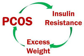 Pcos Diet Chart For Weight Loss Pcod Pcos Indian Diet Chart For Weight Loss Veg Non