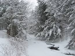 Image result for New England winter scenes