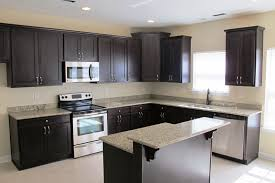 Picture Of Small L Shaped Kitchen Design Dark Cabinet Lovely