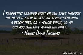Henry Thoreau Quotes Amazing Henry David Thoreau Quote I Frequently Tramped Eight Or Ten Miles