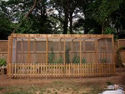 how to keep squirrels out of garden. Photo By: Image Courtesy Of Carmen Collins. How To Keep Squirrels Out Garden R
