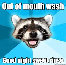 Animal puns goodnight Reddit Out Of Mouth Wash Good Night Sweet Rinse Quickmeme Out Of Mouth Wash Good Night Sweet Rinse Lame Pun Coon Quickmeme