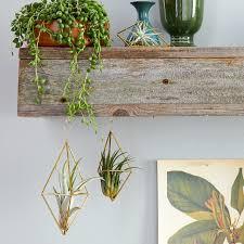 23 <b>Creative DIY</b> Indoor <b>Hanging</b> Plant Holders