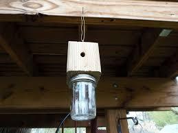 how to build a carpenter bee trap build diy mason