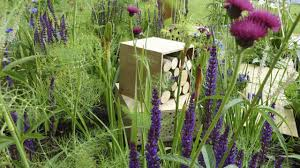 Bee Friendly Garden Design Gardening For Bees Friends Of The Earth