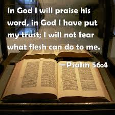 Psalm 56:4 In God I will praise his word, in God I have put my trust; I  will not fear what flesh can do to me.