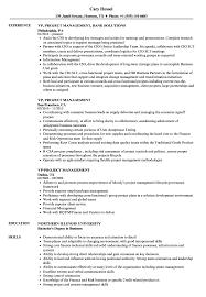 Vp Project Management Resume Samples Velvet Jobs