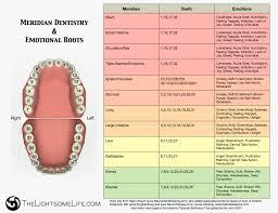 Tooth Meridian Chart Meridian Dental Charts