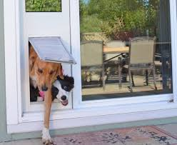 doggie door ideas doggie door