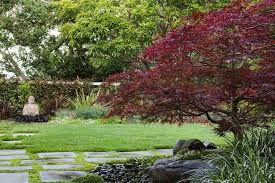 Asian Garden, Buddha, Japanese Maple Northern California Landscaping  Shepard Design Landscape Architecture Greenbrae,