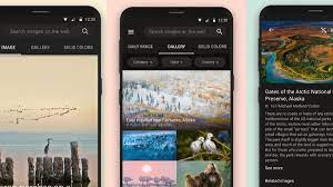Microsoft launches Bing Wallpapers app ...