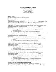 Examples Of Resumes For First Job