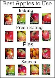 Best Apples For Apple Pie Chart Best Car