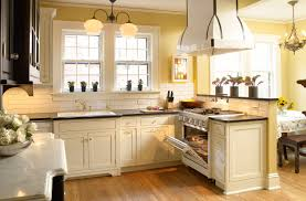 Kitchen Backsplashes Traditional White Stained Kitchen Cabinets