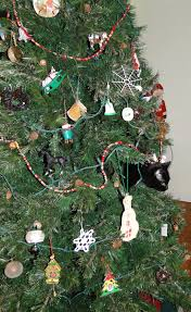 110 Best Knoxville Images On Pinterest  Tennessee East Tennessee The Living Christmas Tree Knoxville Tn