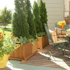 how to create privacy on a patio how to create privacy on a patio 76 best