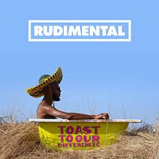 <b>Rudimental</b> - <b>Toast To</b> Our Differences (2019, Vinyl) | Discogs