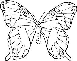 Disegni Per Bambini Da Stampare E Colorare Farfalle By Megghynet