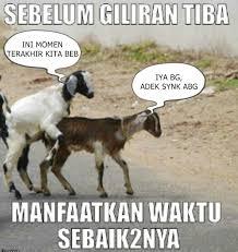 Meme Lucu Idul Adha - Nusagates