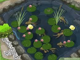 Garden Ponds Designs Amazing 48 Ways To Make A Pond WikiHow