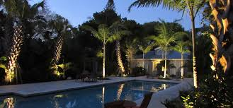 a siesta key landscape design featuring tropical palm trees outdoor lighting and drought tolerant shrubs