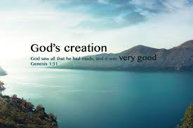 God\'s Beautiful Creation Quotes Best of God's Creation 24 Verses Bible Beautiful Images YouTube