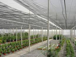 china meyabond 60 mesh anti insect garden netting for plant protection china anti insects net greenhouse net