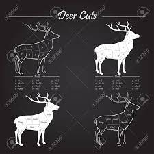 Deer Venison Meat Cut Diagram Scheme Elements On Chalkboard