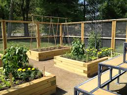 4x8 raised bed vegetable garden layout. Raised Bed Vegetable Garden Design | Nhl17trader.com Gardening - 4x8 Layout Beds For Vegetables
