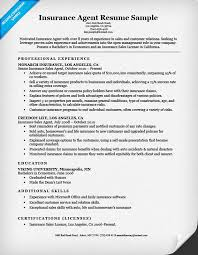 Insurance Agent Job Description For Resume