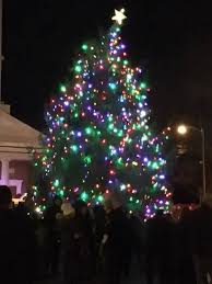 draw lighting. the allvolunteer basking ridge fire co was cheered on saturday after lighting holiday tree at town green credits by linda sadlouskos draw