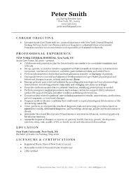Nursing Student Resume Examples Nursing Student Resume Template This ...