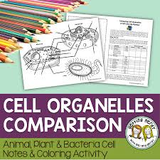 Cell Organelle Structure Function Color By