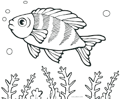 Fish Coloring Pages Entertaining Fish Coloring Pages New Color Free
